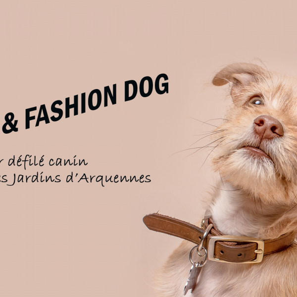Fun & Fashion Dog : défilé canin